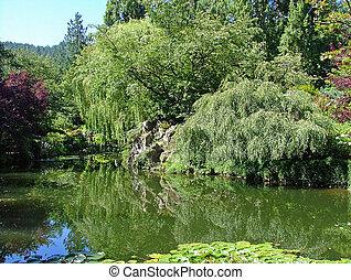 Pond Reflection Victoria BC 2