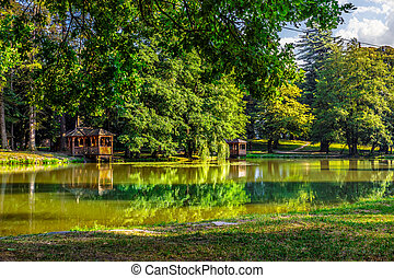 pond reflections in the park - reflections on the pond in...