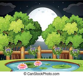 Pond scene at night time