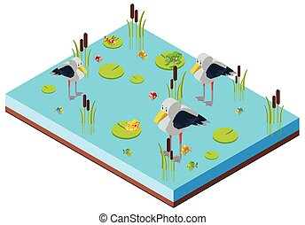 Pond scene with birds in 3D design