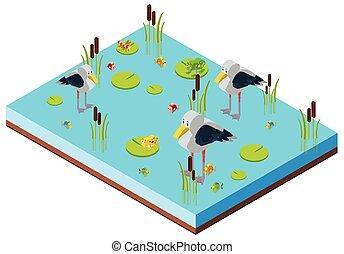 Pond scene with birds in 3D design