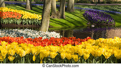Pond with colorful springflowers