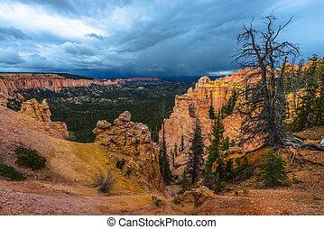 Ponderosa Canyon Bryce National Park