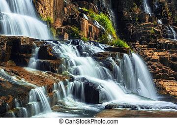 pongour, rainforest, tropical, cascada, fluir, paisaje