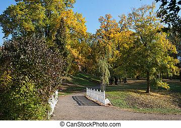 pont bois, automne, parc, blanc