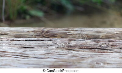 pont, bois, filles, quelques-uns, pieds, dépassement