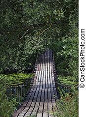 pont bois, forêt