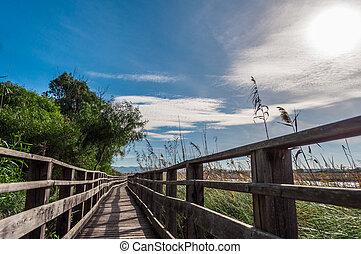 pont bois, milieu, nature