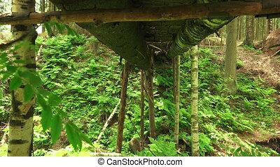 pont, bois, sur, forest., 4k., falaise
