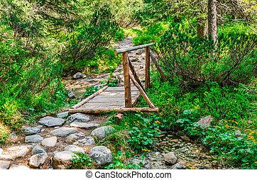 pont bois, sur, forest., ruisseau