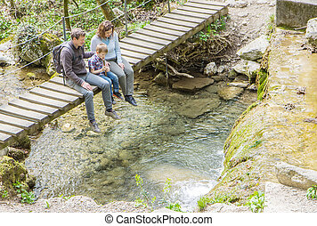pont, famille, séance, bois, milieu, forêt, heureux