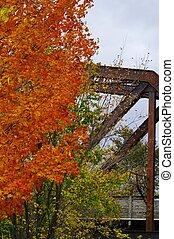 pont, feuilles marche, automne