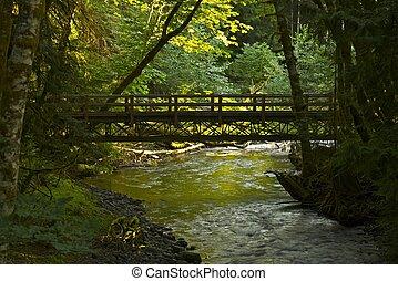 pont, forêt