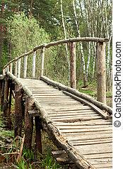 pont, forêt, printemps
