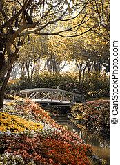 pont, jardin fleur, bois, soleil, sépia, matin, couleur, lumière