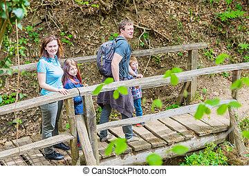 pont, marche, famille, bois, milieu, forêt, heureux