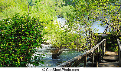 pont, nature