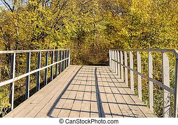 pont, ponton, ensoleillé, automne, rivière, jour