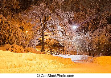 pont, soir, hiver, ville, bois, parc