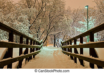 pont, soir, parc, hiver, ville