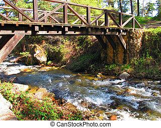 pont, vieux, ruisseau, bois, sur, forêt