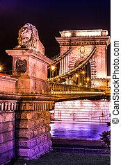 ponte, 203, lanchid., ungherese, catena, vista, lungo, lanchid, famoso, szechenyi, metri, notte, budapest, hungary., o, nome