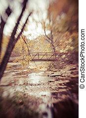 ponte, através, a, madeiras