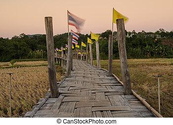 ponte, bambù, riso, passare, campo