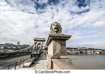 ponte, catena, leone, szechenyi, budapest, hungary.