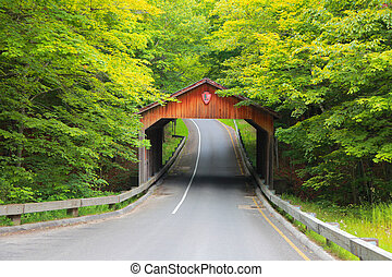 ponte, coberto