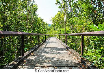 ponte, concreto, passerella, con, albero, in, il, parco pubblico