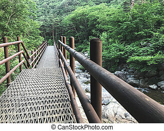 ponte, coréia, nacional, park., ferro, pequeno, seoraksan, sul