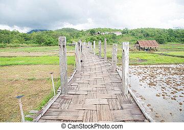 ponte, do, tong, pae