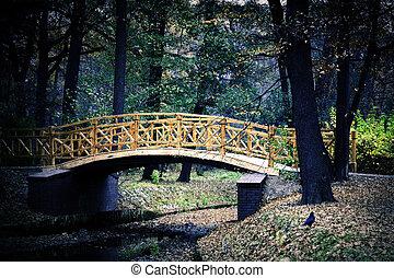 ponte, japoneses