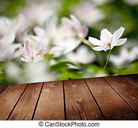 ponte, legno, anemone, fiori bianchi, tavola., vuoto