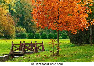 ponte madeira, outono, parque