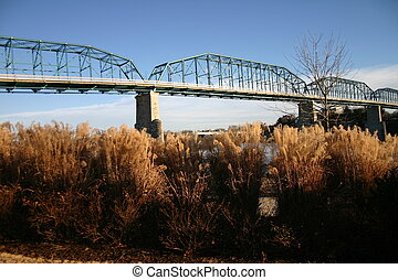 ponte, n, gramas
