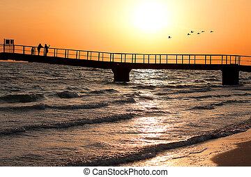 ponte, pôr do sol, afastado, voando, costa, mar, rebanho, pássaros