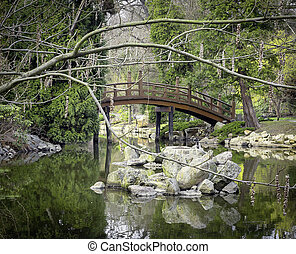 ponte, parque
