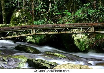 ponte, sobre, fluxo, 2