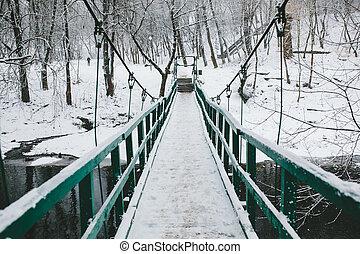 ponte, sobre, rio, parque, guiando