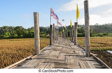 ponte, vecchio, campo, passare, bambù, riso