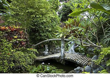 ponte, woden, jardim, oriental