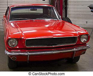 Pony Car 1