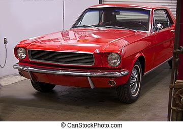 Pony Car 4