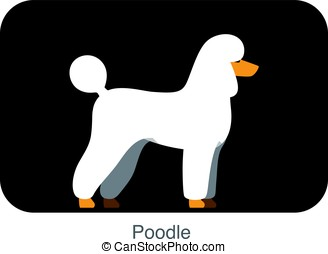 Poodle dog body flat icon design