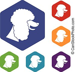 Poodle dog icons set