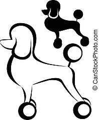 Poodle dog. Poodle purebred dog with Continental clip standing in side view vector silhouette isolated