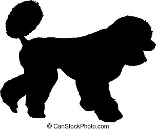 Poodle dog silhouette on a white background