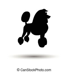 Poodle icon. Black background with white. Vector...
